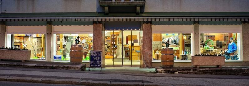 Artemisia shop