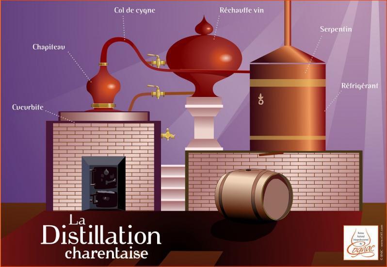 Distillation bnic