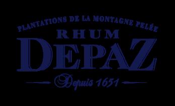 Logo depaz