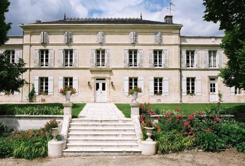 Chateau mesna