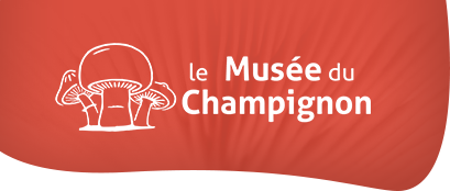 Logo champi