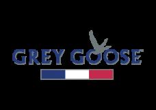 Logogoose